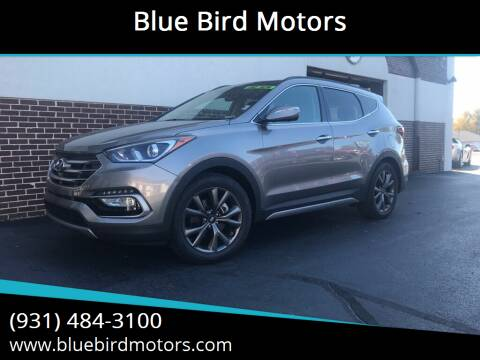 2017 Hyundai Santa Fe Sport for sale at Blue Bird Motors in Crossville TN