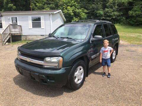 2003 Chevrolet TrailBlazer for sale at Riley Auto Sales LLC in Nelsonville OH