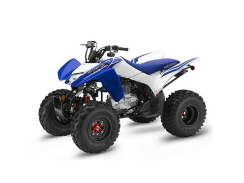 2021 Honda TRX250X for sale at Southeast Sales Powersports in Milwaukee WI