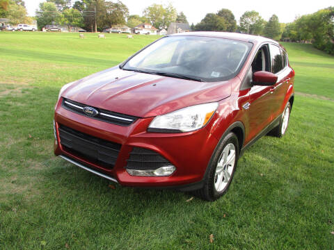 2016 Ford Escape for sale at Triangle Auto Sales in Elgin IL