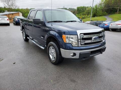 2014 Ford F-150 for sale at DISCOUNT AUTO SALES in Johnson City TN
