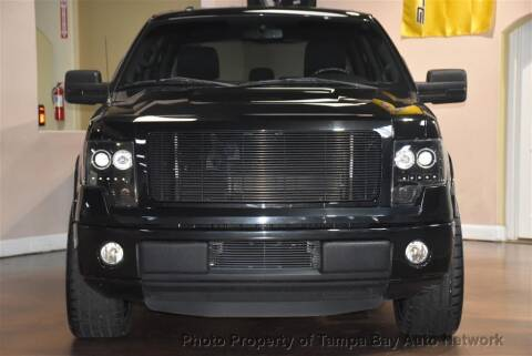 2013 Ford F-150 for sale at Tampa Bay AutoNetwork in Tampa FL