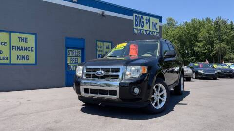 2008 Ford Escape for sale at BIG #1 INC in Brownstown MI