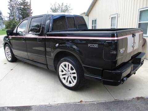 2008 Ford F-150 for sale at Classics and More LLC in Roseville OH