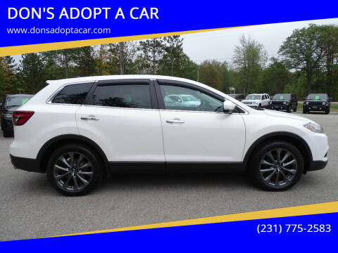 2015 Mazda CX-9 for sale at DON'S ADOPT A CAR in Cadillac MI
