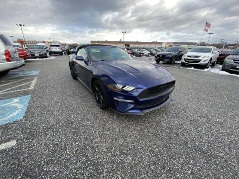 2019 Ford Mustang for sale at King Motors featuring Chris Ridenour in Martinsburg WV
