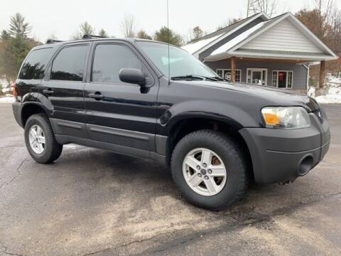 2007 Ford Escape for sale at Drivers Choice Auto & Truck in Fife Lake MI