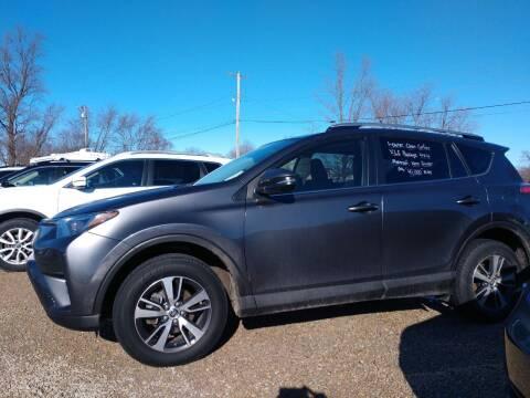 2017 Toyota RAV4 for sale at Economy Motors in Muncie IN