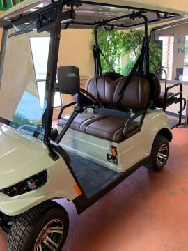 2020 Ziggy LSV for sale at ADVENTURE GOLF CARS in Southlake TX