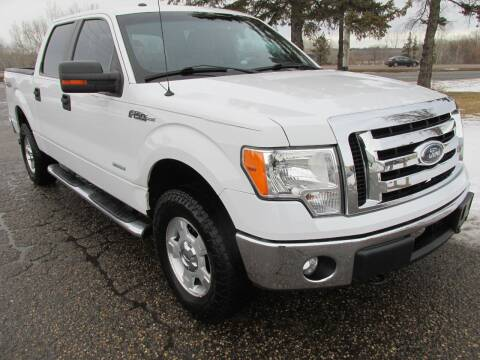 2012 Ford F-150 for sale at Buy-Rite Auto Sales in Shakopee MN