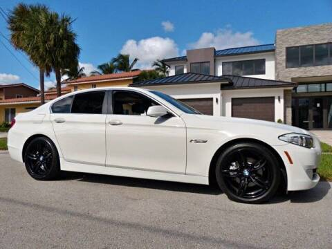 2013 BMW 5 Series for sale at Lifetime Automotive Group in Pompano Beach FL
