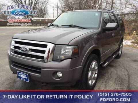 2014 Ford Expedition for sale at Fort Dodge Ford Lincoln Toyota in Fort Dodge IA