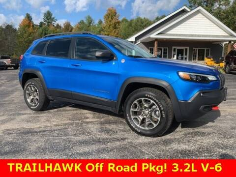 2020 Jeep Cherokee for sale at Drivers Choice Auto & Truck in Fife Lake MI