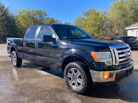 2011 Ford F-150 for sale at Deals on Wheels Auto Sales in Scottville MI