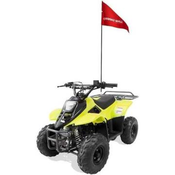 2021 OFFROAD MALL 0991 110cc Youth ATV for sale at A C Auto Sales in Elkton MD