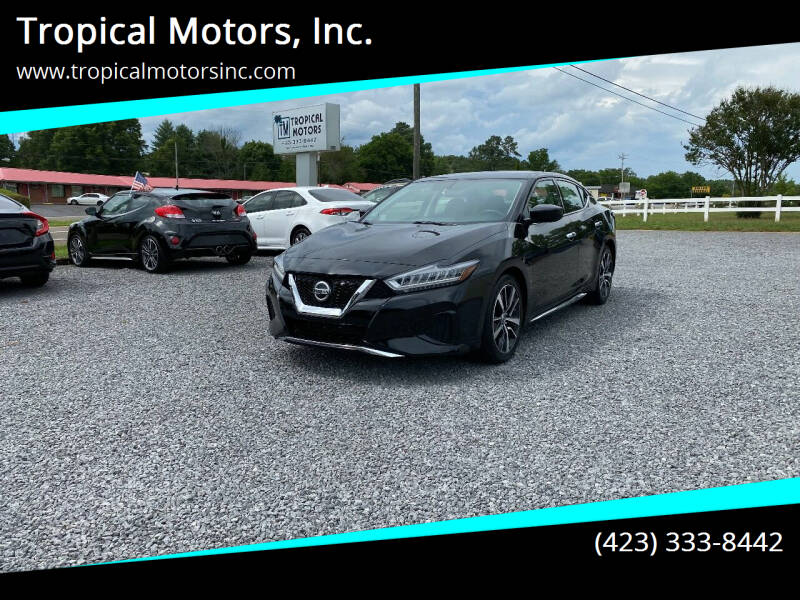 2019 Nissan Maxima for sale at Tropical Motors, Inc. in Riceville TN