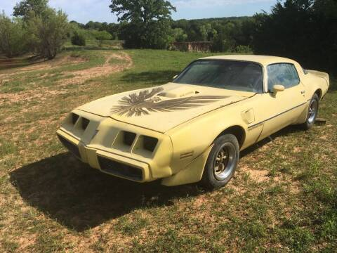 1979 Pontiac Firebird Trans Am for sale at CLASSIC MOTOR SPORTS in Winters TX