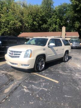 2014 Cadillac Escalade ESV for sale at Butler's Automotive in Henderson KY