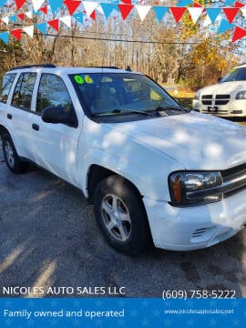 2006 Chevrolet TrailBlazer for sale at NICOLES AUTO SALES LLC in Cream Ridge NJ