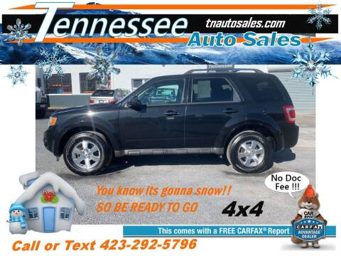2011 Ford Escape for sale at Tennessee Auto Sales in Elizabethton TN