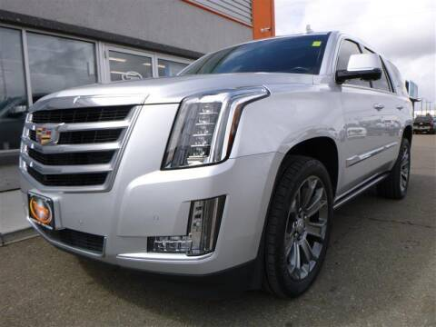 2016 Cadillac Escalade for sale at Torgerson Auto Center in Bismarck ND