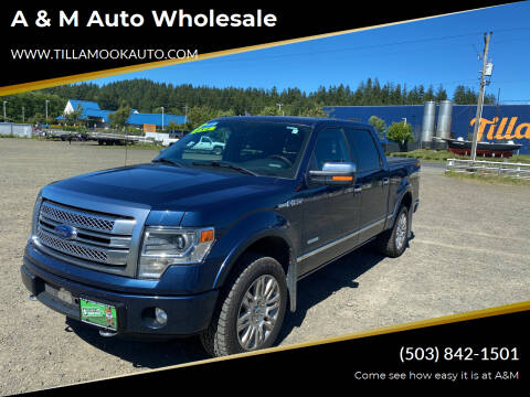 2013 Ford F-150 for sale at A & M Auto Wholesale in Tillamook OR