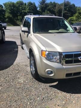 2011 Ford Escape for sale at Guarantee Auto Galax in Galax VA
