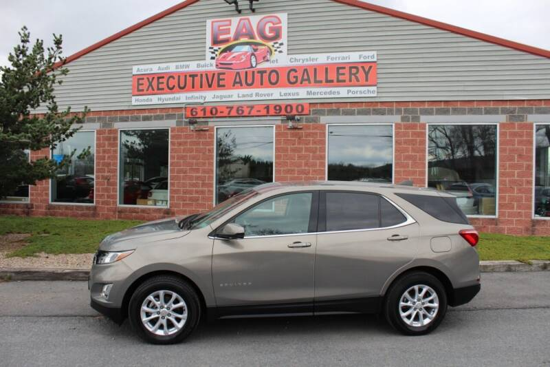 2019 Chevrolet Equinox for sale at EXECUTIVE AUTO GALLERY INC in Walnutport PA