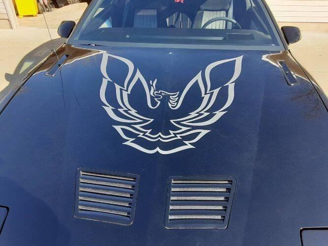 1985 Pontiac Trans Am for sale in Cadillac, MI