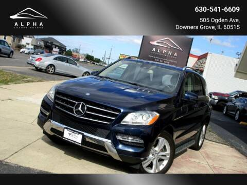 2013 Mercedes-Benz M-Class for sale at Alpha Luxury Motors in Downers Grove IL
