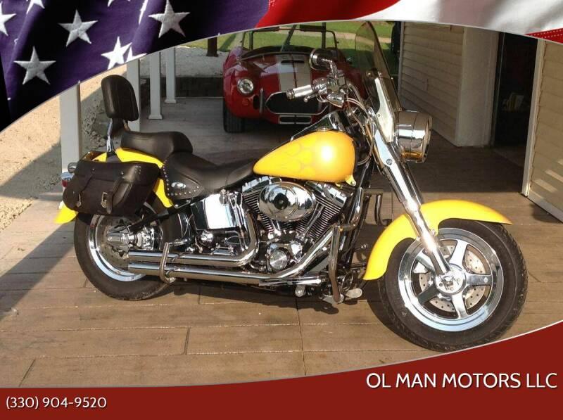 2002 Harley-Davidson Fat Boy for sale at Ol Man Motors LLC in Louisville OH