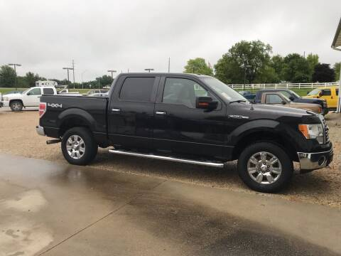 2010 Ford F-150 for sale at Lanny's Auto in Winterset IA