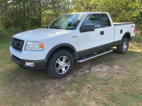 2005 Ford F-150 for sale at Expressway Auto Auction in Howard City MI