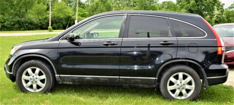 2009 Honda CR-V for sale at PINNACLE ROAD AUTOMOTIVE LLC in Moraine OH