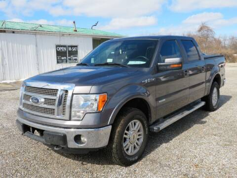 2012 Ford F-150 for sale at Low Cost Cars in Circleville OH