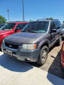 2003 Ford Escape for sale at PB&J Auto in Cheyenne WY
