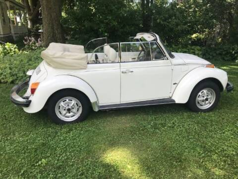 1979 Volkswagen Super Beetle for sale at Classic Car Deals in Cadillac MI