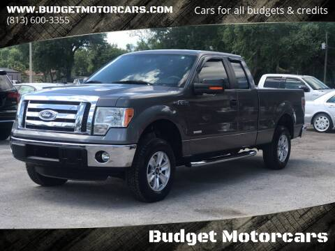 2011 Ford F-150 for sale at Budget Motorcars in Tampa FL