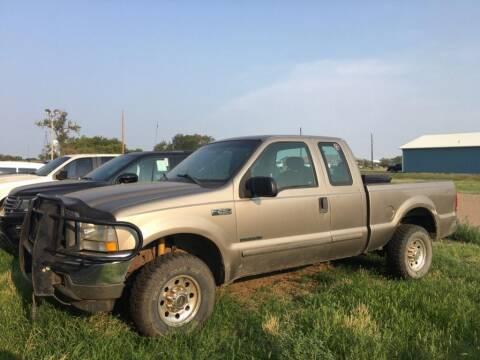 2003 Ford F-250 Super Duty for sale at Willrodt Ford Inc. in Chamberlain SD