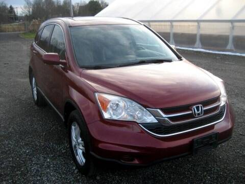 2011 Honda CR-V for sale at DETAILZ USED CARS in Endicott NY