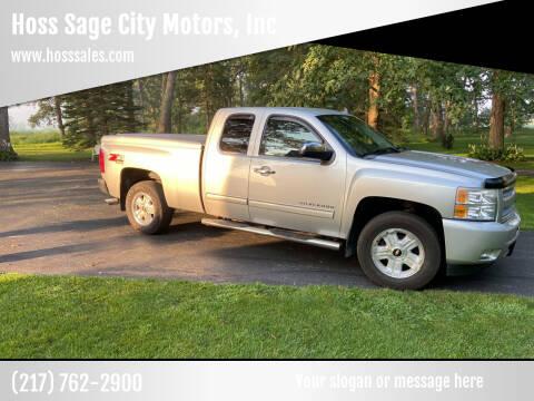 2010 Chevrolet Silverado 1500 for sale at Hoss Sage City Motors, Inc in Monticello IL
