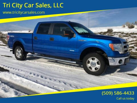 2014 Ford F-150 for sale at Tri City Car Sales, LLC in Kennewick WA