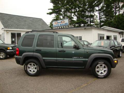 2003 Jeep Liberty for sale at G and G AUTO SALES in Merrill WI