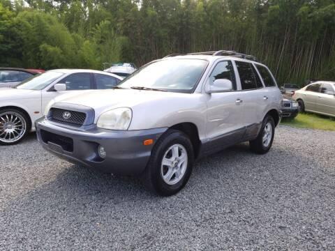2003 Hyundai Santa Fe for sale at TR MOTORS in Gastonia NC