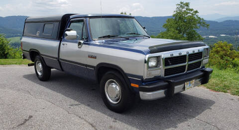 1991 Dodge RAM 250 for sale at Rare Exotic Vehicles in Weaverville NC