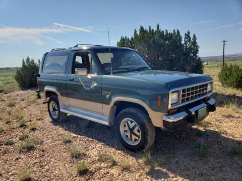1986 Ford Bronco II for sale at Pikes Peak Motor Co in Penrose CO