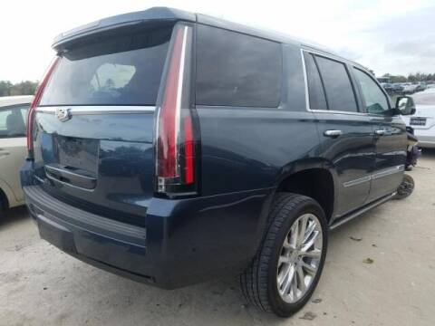 2019 Cadillac Escalade for sale at STS Automotive - Miami, FL in Miami FL
