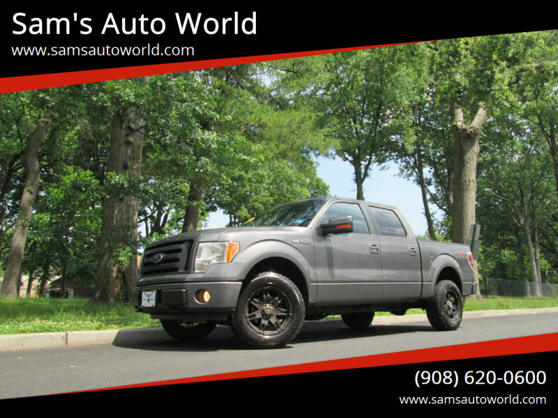 2009 Ford F-150 for sale at Sam's Auto World in Roselle NJ