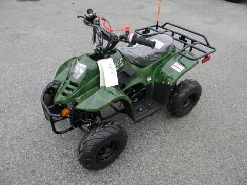 2020 EXTREME 3868 Hawk 110cc for sale at A C Auto Sales in Elkton MD