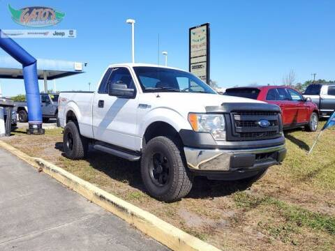 2014 Ford F-150 for sale at GATOR'S IMPORT SUPERSTORE in Melbourne FL